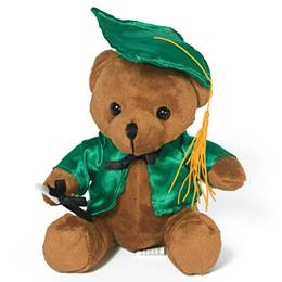 Graduation Teddy Bear - Green